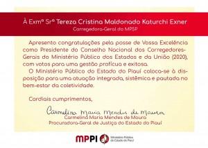 Presidente Tereza Cristina (1)